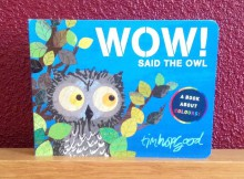 WOW! Said the Owl Book Review a mum reviews