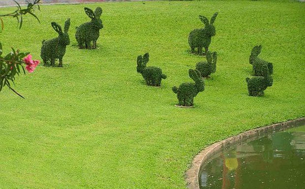 A More Fun Garden With Animal Topiary A Mum Reviews