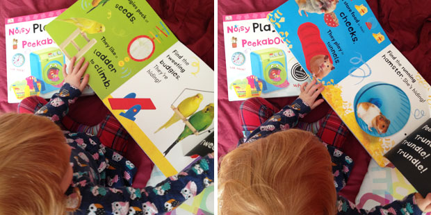 Noisy Peekaboo Books From DK Books Review A Mum Reviews