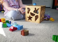 Sri Toys Wooden Toys | Four Seasons Sorter Review A Mum Reviews