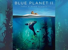 Giveaway: Win Blue Planet II on DVD! A Mum Reviews