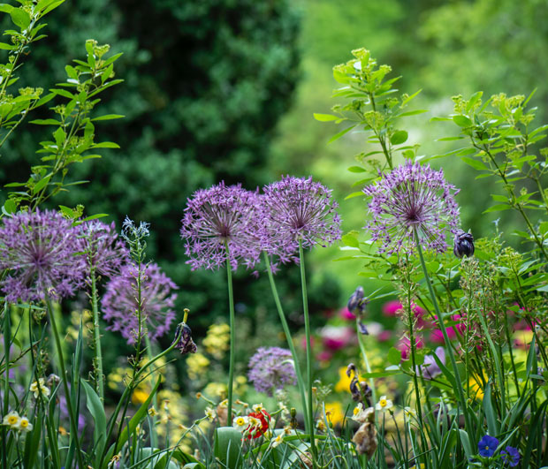 How Much Can Gardening Really Cost You in the UK? A Mum Reviews