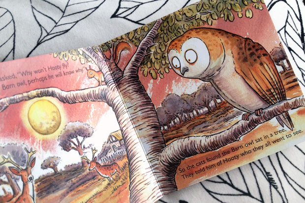 A Little Owl Called Hooty Book Review A Mum Reviews