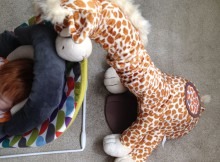 Sleepybobo Gerry the Giraffe Portable Baby Rocker Review A Mum Reviews
