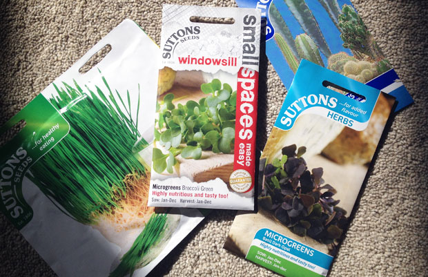 What to Sow and Grow in October - Tips for Growing Seeds A Mum Reviews