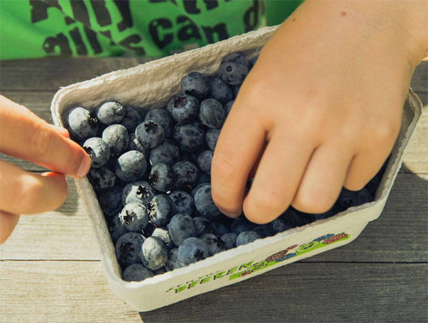 A Nationwide Picture Of Toddlers' Eating Habits & Activity Levels A Mum Reviews