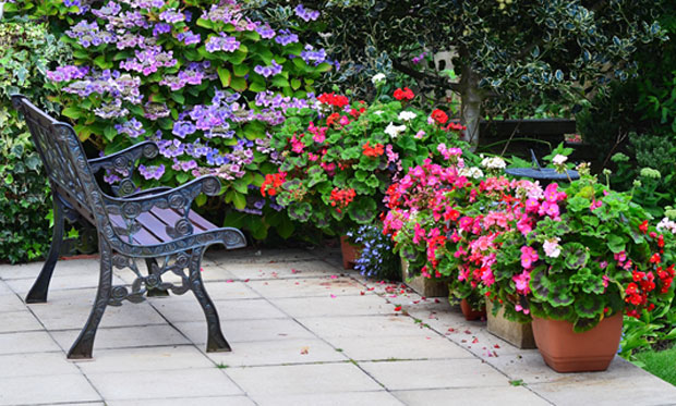 9 Tips to Master Low Maintenance Gardening A Mum Reviews