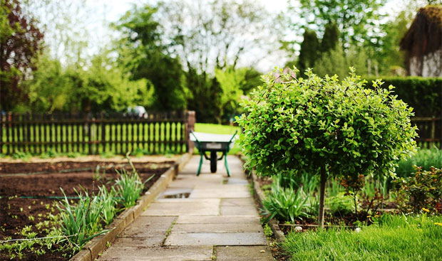 5 Tips To Make Your Garden More Eco-Friendly A Mum Reviews