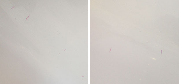 How to Remove Toy Marks from Bathtub in Seconds A Mum Reviews