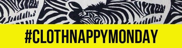 Reusable Nappies Review | Cloth Nappy | #ClothNappyMonday A Mum Reviews