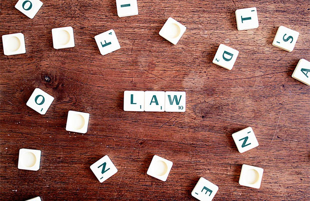 What to Look for in Legal Experts A Mum Reviews