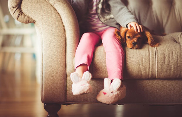 Choosing the Best Vacuum Cleaner When You Have a Pet A Mum Reviews