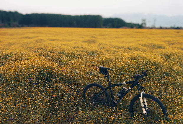 Get Started with Mountain Biking This Summer A Mum Reviews