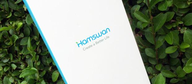 HAMSWAN Sonic Toothbrush Review A Mum Reviews