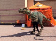 Sheffield Summer Fun - Dexter the Dinosaur & Monkey Bizzness A Mum Reviews
