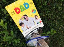 TheDadLab: 40 Quick, Fun and Easy Activities to do at Home A Mum Reviews