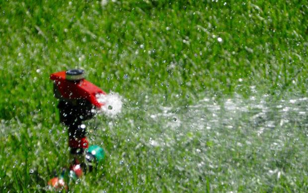 How to Keep a Lush, Green Lawn A Mum Reviews