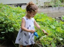 The Garden Classroom - Benefits of Gardening for Children A Mum Reviews