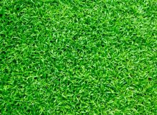 Why Even the Keenest Gardeners Are Turning to Artificial Grass A Mum Reviews