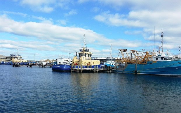 5 Must-See Attractions in Fremantle for Travellers A Mum Reviews