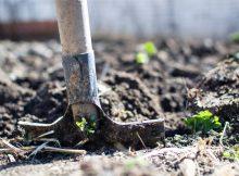 Building a Garden from Scratch - New Build Garden Plans A Mum Reviews