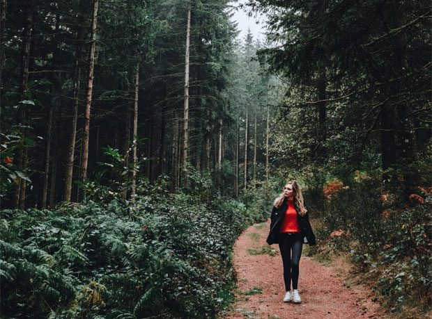 Forest Bathing A Mum Reviews