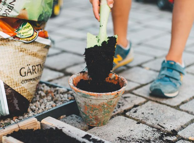 5 Easy Ways to Maintain Your Garden A Mum Reviews