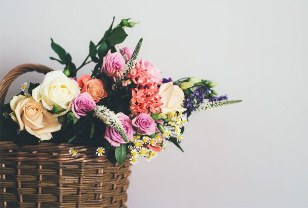 6 Most Beneficial Flowers To Your Well-Being A Mum Reviews
