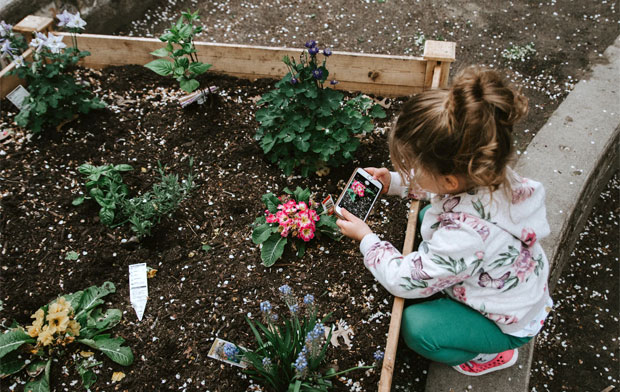 How To Design a Kid-Friendly Garden A Mum Reviews