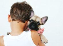 Teaching Your Child Responsibility Through Pet OwnershipA Mum Reviews