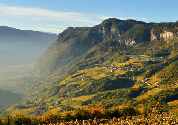 Alto Adige Wines: Delicious Wines from Alpine Vineyards A Mum Reviews
