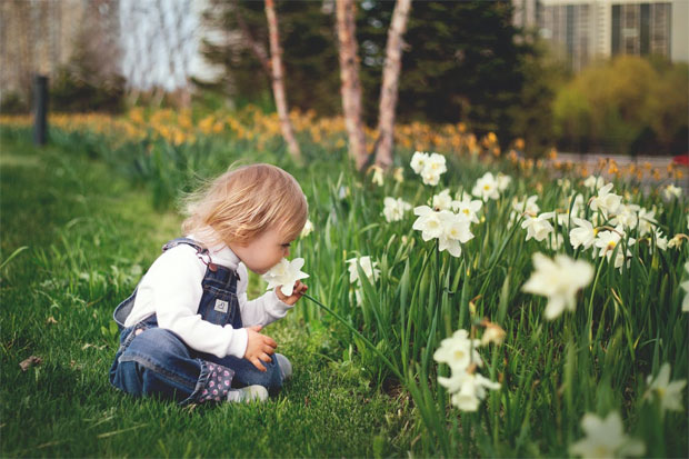 4 Easy Ways To Fall In Love With Your Garden Again A Mum Reviews