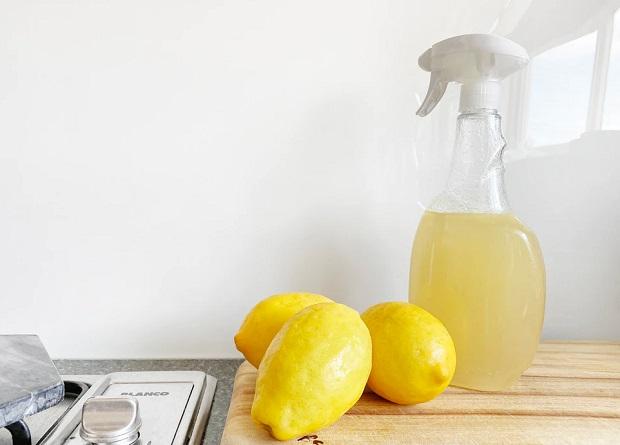 Lemon Vinegar Cleaning