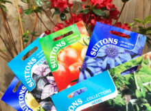 Getting into Gardening with Suttons