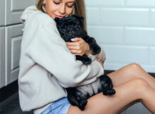 Top 5 Best Small Dog Breeds