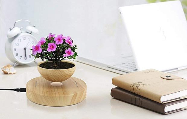Flower Office